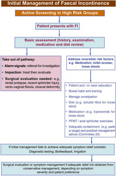Fig. 13. Initial management of Faecal Incontinence.